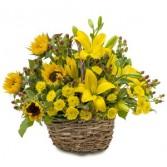 Sunset Basket Fresh Flower Arrangement
