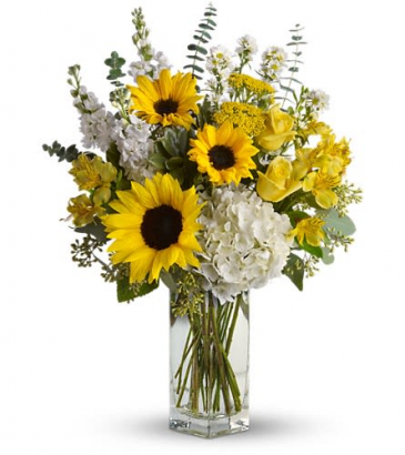 To See you Smile fresh with Sunflowers