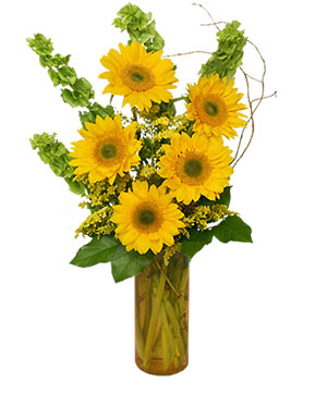 Today's Your Day! Bouquet in Germantown, MD | GENE'S FLORIST & GIFT BASKETS