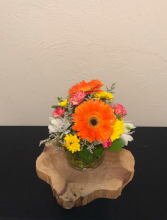Token of Appreciation! Small Vase Arrangement