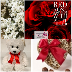 Tonight is your night Bro Roses/chocolates/bear in Houston, TX | EXOTICA THE SIGNATURE OF FLOWERS