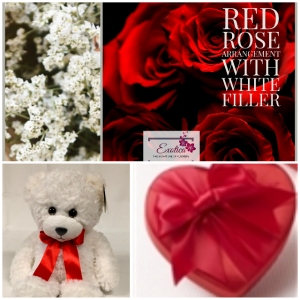 Tonight is night to your night Bro Roses/chocolates/bear in Houston, TX | EXOTICA THE SIGNATURE OF FLOWERS