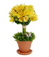 Topiary Jazz fresh flowers