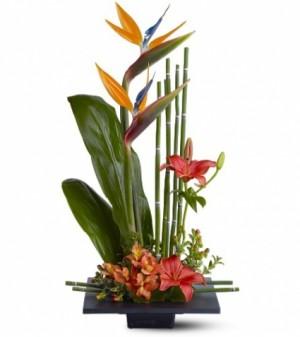 Tropical Paradise  in Largo, FL | Rose Garden Florist