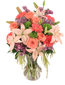 Touch Her Heart Arrangement
