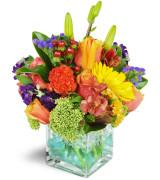 Touch of Laughter - 441 Vase arrangement