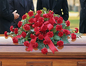 TOUCH OF SYMPATHY Half Casket Spray of all red carnations and a variety of greens. (Any color carnation can be used)