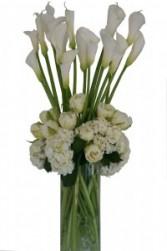 Towering Callas Cut Flowers
