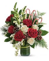 Festive pine arrangement