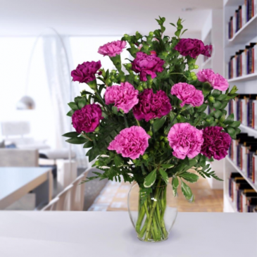 Traditional dozen of carnations  Doz Of carnations (color may vary)