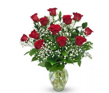 Traditional Dozen Red Roses Red Roses