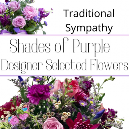 Traditional Purple