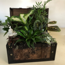 Treasure Chest Planter Planter