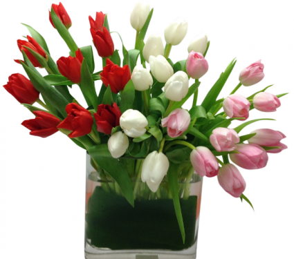 Infinite Tulips Vase Arrangement
