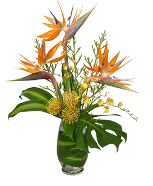 Tropical Flowers Free Same Day Delivery In Nyc