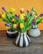 Tribeca Tulips fresg