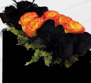 Trick or Treat ! Dz. Black & Orange Roses in Colorado Springs, CO | ENCHANTED FLORIST II