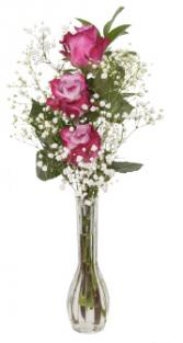 Triple Rose Bud Vase Valentine