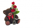 Triple Rose with Teddybear