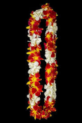 TROJAN AND WHITE DOUBLE ORCHID LEI GRADUATION LEI