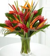 Tropic Vase Tropical