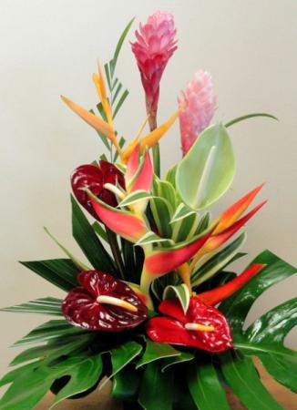 tropical arrangement # 3 tropical
