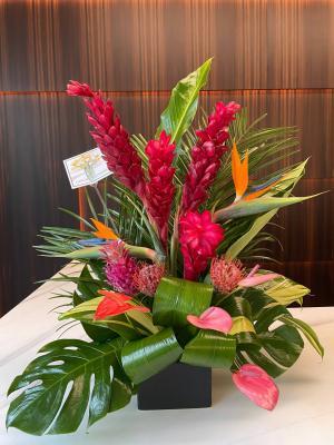 Tropical Arrangement   in Coconut Grove, FL | Luxury Flowers
