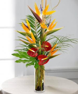 Tropical arrangement  Any occasion  in Coconut Grove, FL | Luxury Flowers