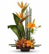 Tropical Arrangement (Flowers and colors may vary)