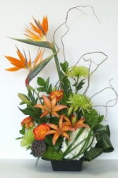 Tropical Arrangement TROP03