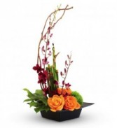 Tropical Art Bouquet High Style Orchids in Low Dish