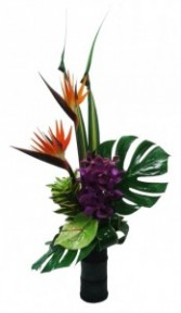 Tropical Birds Arrangement