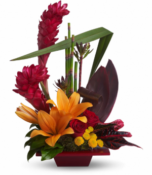 Tropical Bliss  in Fort Collins, CO | D'ee Angelic Rose Florist