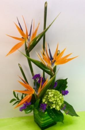 Tropical Blooms  in Troy, MI | DELLA'S MAPLE LANE FLORIST