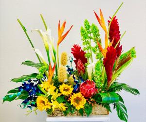 Tropical Blossom Premium  in Carlsbad, CA   Fleur d' Elegance