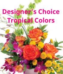 Tropical Colors Designer's Choice