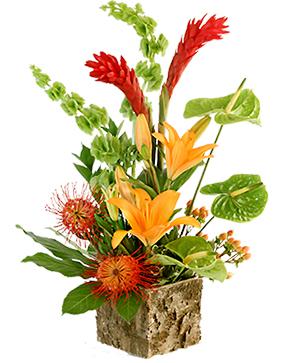 Tropical Delight  in Hillsboro, OR | FLOWERS BY BURKHARDT'S