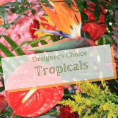 Tropical Delights