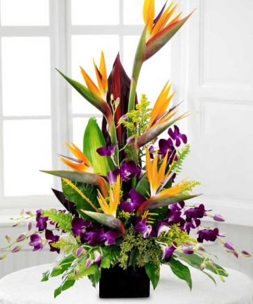 Tropical Dreams Fresh Flowers