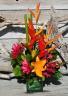 Tropical Explosion Petals & Vines