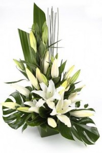 Tropical Flare Lillies Cut Flowers in Oasis