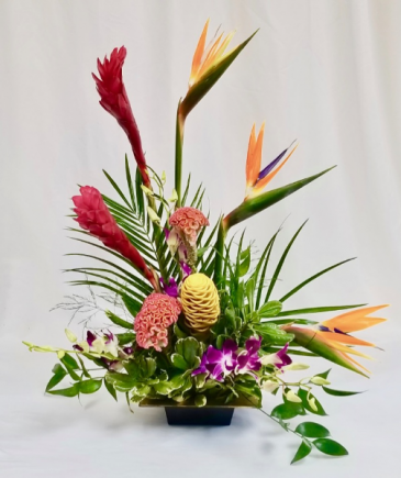 Tropical Garden Tropical Bouquet