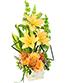 GOLDEN SUNBURST of Fresh Flowers