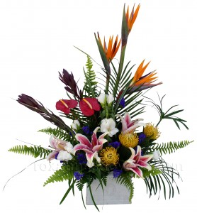 Tropical Impression Container Arrangement in Akron, PA | ROXANNE'S FLOWERS