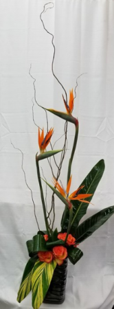 Tropical Madness fresh tropical arrangements in Bolivar, MO | The Flower Patch & More