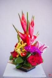 Tropical Mix Flowers Tropical