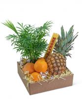 Tropical Oasis Basket Gift Basket