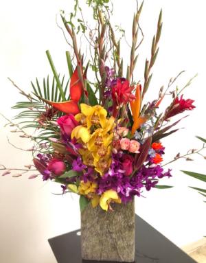 Tropical Orchids Paradise Modern/Tropical Designs  in Granada Hills, CA | GRANADA HILLS FLOWERS