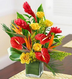 Tropical Paradise  in Clarksville, TN | FLOWERS BY TARA AND JEWELRY WORLD