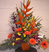Tropical Paradise Tropical arrangement